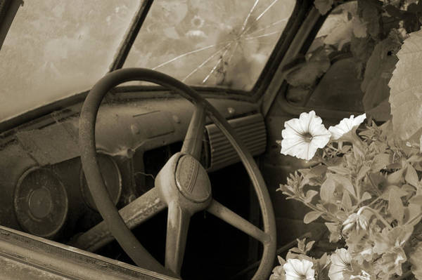 Photograph - Driving Flowers by Arthur Fix