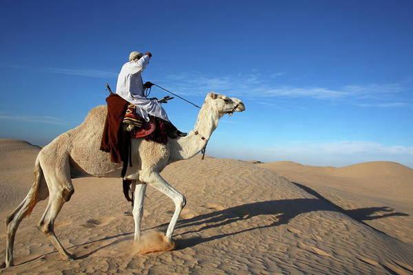 Dromedary Photograph - Dromedary Rider In The Sahara, Douz by Godong / Robertharding