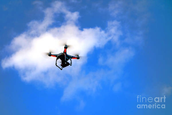 Drone Wall Art - Photograph - Droning by Olivier Le Queinec