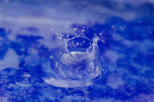 Photograph - Water Drop And Splash by Crystal Wightman