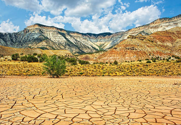 Photograph - Dry Mesa by Rick Wicker