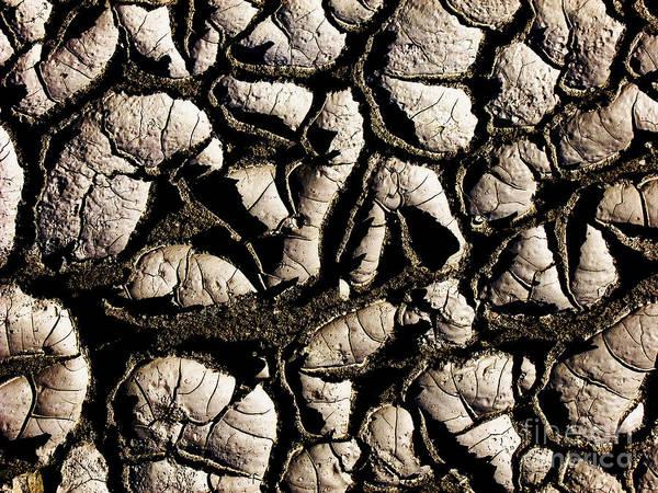 Photograph - Dry Mud Abstract by Kae Cheatham