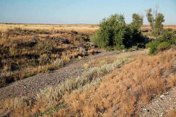 Diverted Wall Art - Photograph - Dry River During Crop Irrigation by Jim West