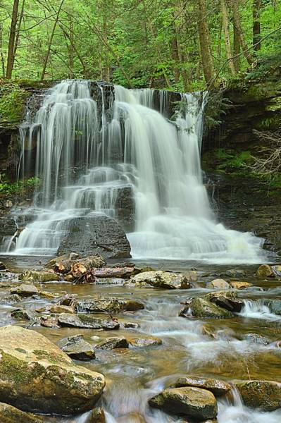 Wall Art - Photograph - Dry Run Falls #1 by Joel E Blyler