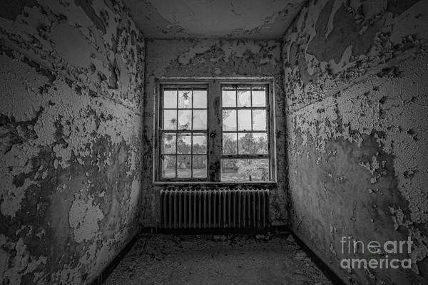 Nikon D800 Wall Art - Photograph - Dry Skin Bw by Michael Ver Sprill