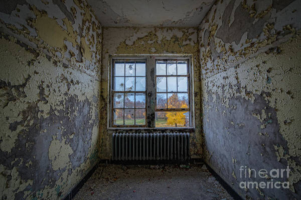 Nikon D800 Wall Art - Photograph - Dry Skin by Michael Ver Sprill