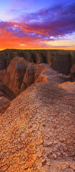 Wall Art - Photograph - Dry Sunrise by Kadek Susanto