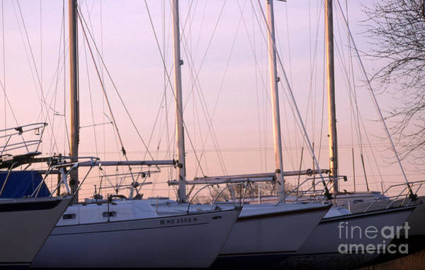 Sailing Terms Photograph - Drydock by Skip Willits