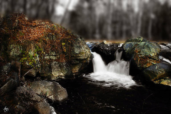 Photograph - Dual Falls  by Wayne King