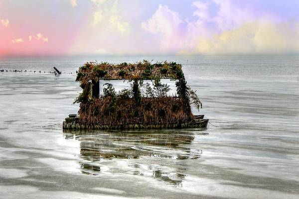 Photograph - Duck Blind by Rebecca Frank