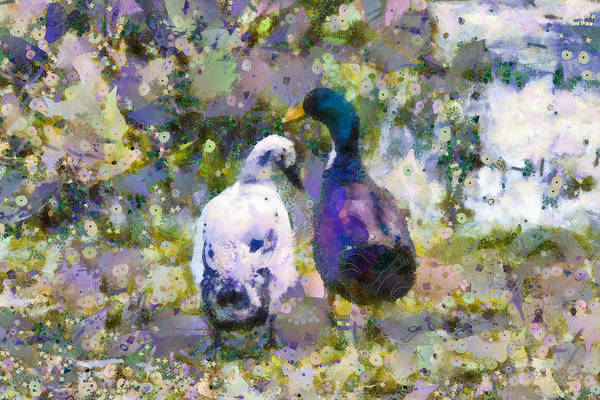 Mixed Media - Duck Friends by Priya Ghose