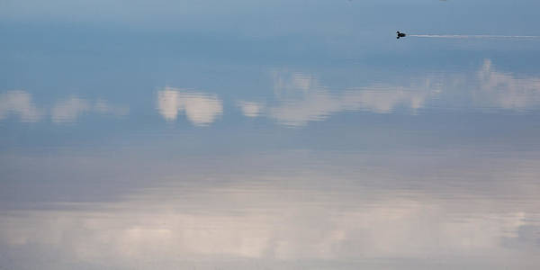 Photograph - Duck Tail Contrail by Peter Tellone