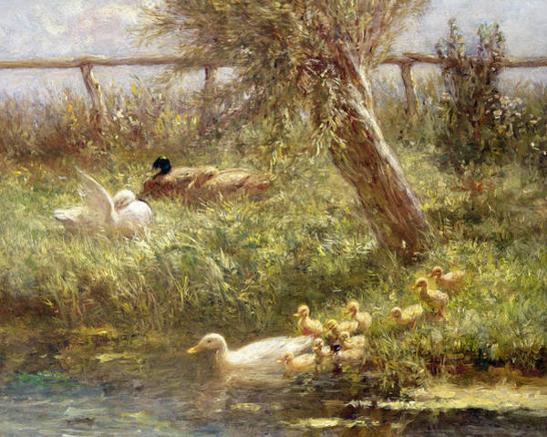 Stump Painting - Ducks And Ducklings by David Adolph Constant Artz