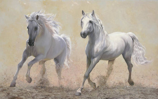 White Horse Painting - Due Cavalli by Guido Borelli