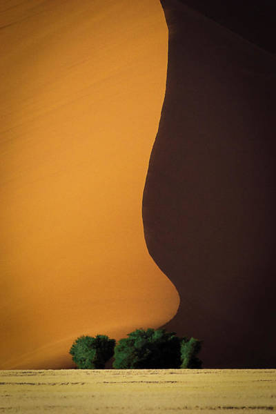 Sand Wall Art - Photograph - Dune 1 by John Rickwood