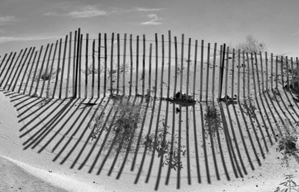 Photograph - Dune Builder Bw by Scott Campbell