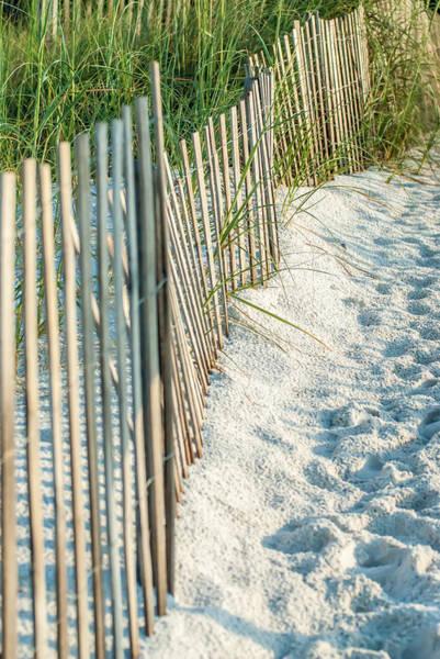 Photograph - Dune Fence On Beach  by Alex Grichenko