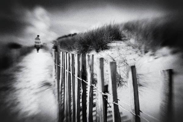 Reed Photograph - Dune by Luc Vangindertael (lagrange)