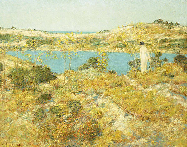 Painting - Dune Pool by Childe Hassam