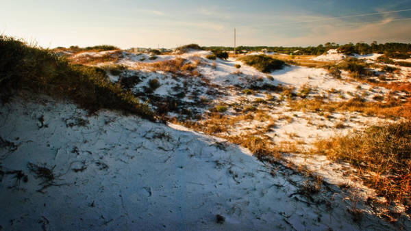 Grayton Beach State Park Photograph - Dune-scape by George Taylor