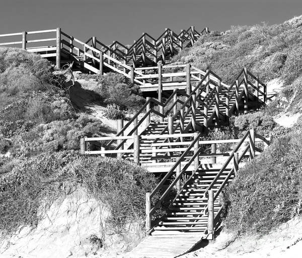 Photograph - Dune Steps 02 by Rick Piper Photography