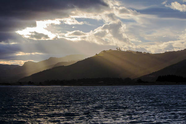 Photograph - Dunedin Harbour by Nicholas Blackwell