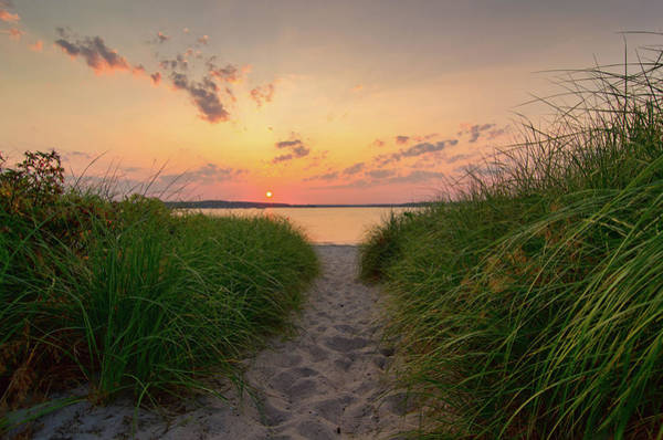 Scarborough Photograph - Dunegrass Sunset, Ferry Beach by Www.cfwphotography.com