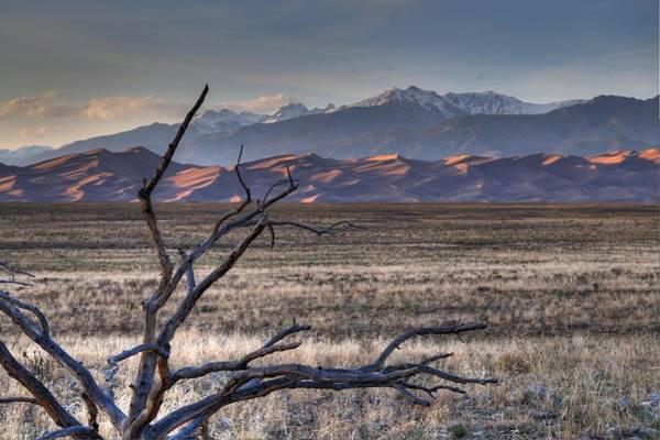 Wall Art - Photograph - Dunes by David Ross