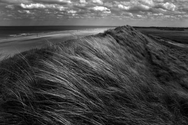 Grass Photograph - Dunes Hair. by Katarzyna Pardo