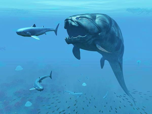 Prehistory Photograph - Dunkleosteus Hunting Primitive Sharks by Walter Myers