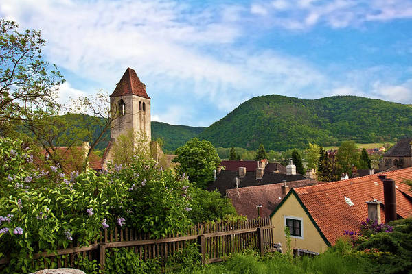 Central Europe Wall Art - Photograph - Durnstein, Austria, Wachau Valley, View by Miva Stock