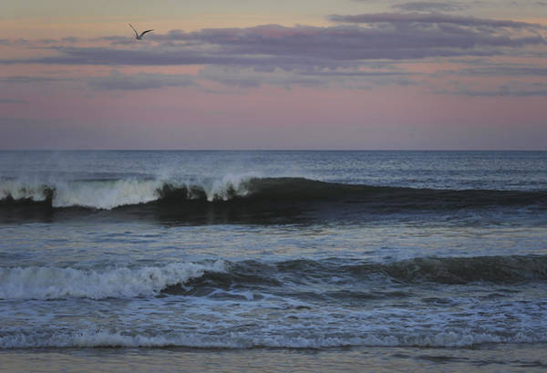 Photograph - Dusk At The Shore by Terry DeLuco