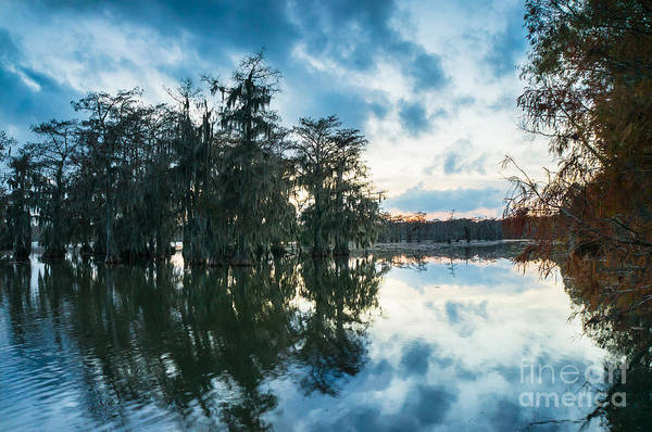 Wall Art - Photograph - Dusk In Lake Martin by Ellie Teramoto