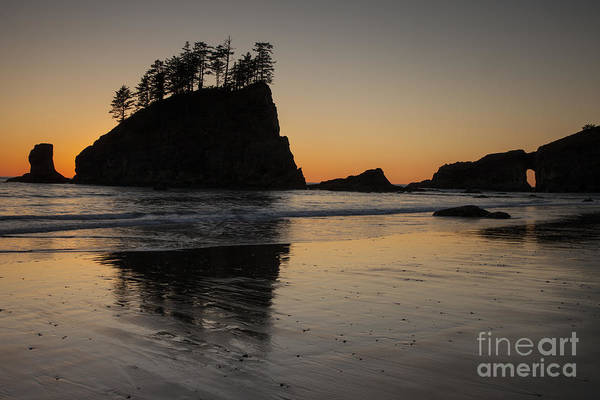 Wall Art - Photograph - Dusk On The Olympic Peninsula by Timothy Johnson