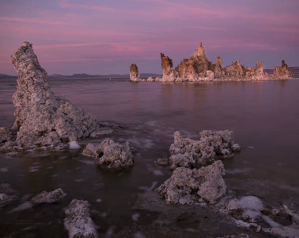 Photograph - Dusted Pink Breeze Over Mono Lake by Denise Dube