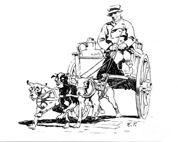 Dutch Dog Cart 1884 Photograph By Padre Art