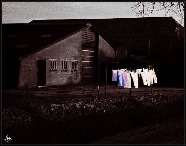 Photograph - Dutch Incongruities At Dusk by Wayne King