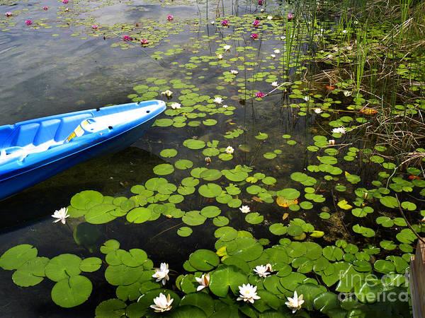 Photograph - Dutch Lake by Brenda Kean