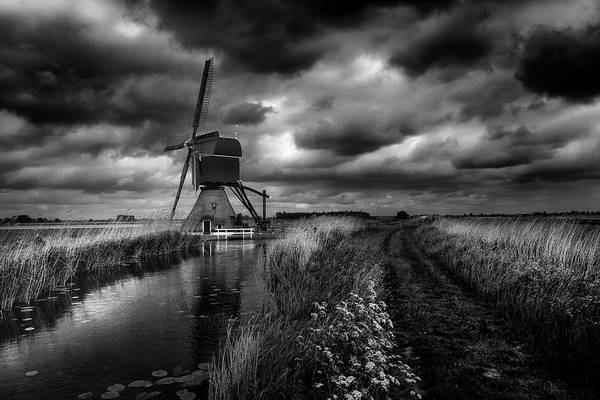 Mills Photograph - Dutch Pride by Michiel Hageman