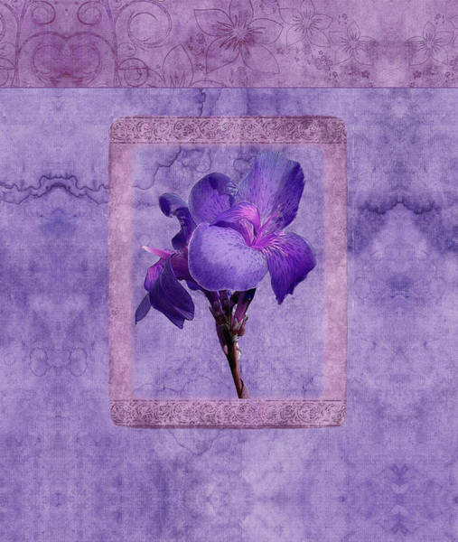 Photograph - Duvet Purple Flower by Robert Kernodle