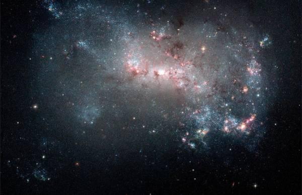 Wall Art - Photograph - Dwarf Galaxy Ngc 4449 by Nasa/esa/stsci/science Photo Library