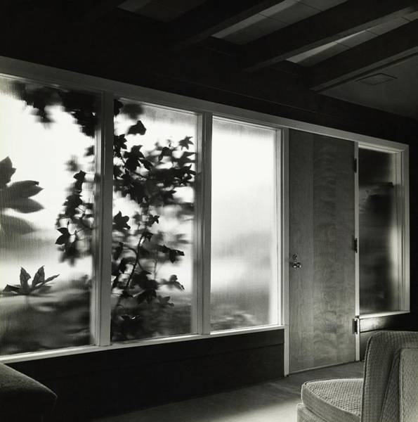 Frosted Glass Photograph - E John Brandeis House In Los Angeles by Fred Lyon