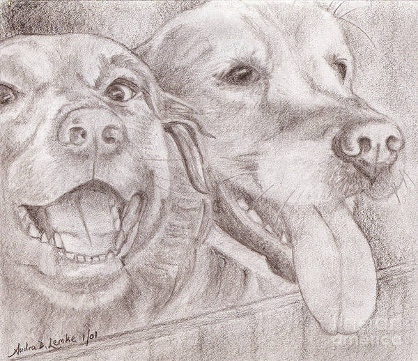 Mutt Drawing - Eager Best Friends by Audra D Lemke