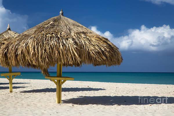 Photograph - Eagle Beach - Aruba by Brian Jannsen