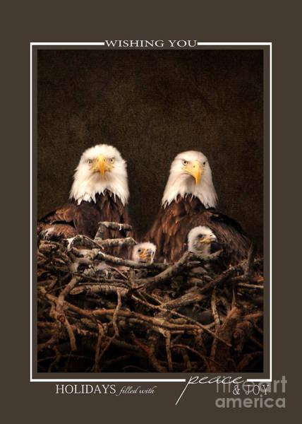Photograph - Eagle Family Wildlife Christmas Cards by Jai Johnson