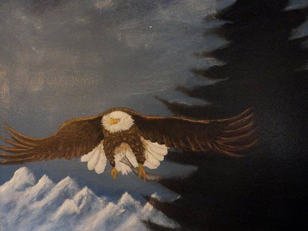 Painting - Eagle Flying by Dan Wagner