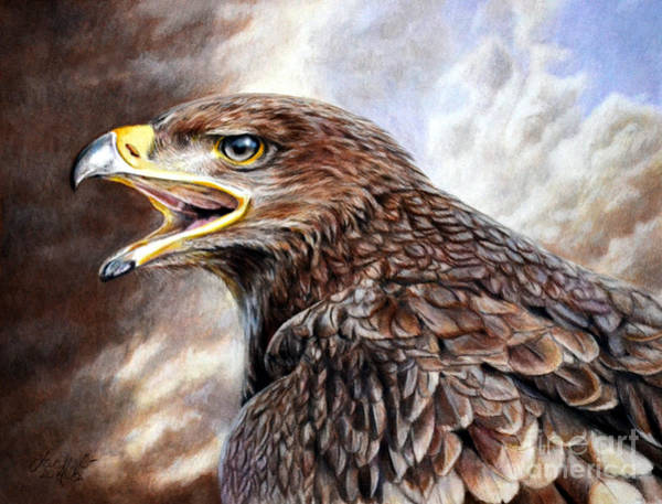 Painting - Eagle Cry by Lachri