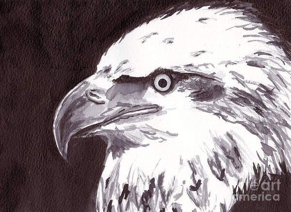 Black Wall Art - Painting - Eagle by Michael Rados
