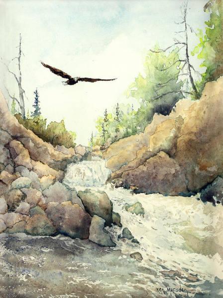 Eagle Over Dave's Falls Art Print