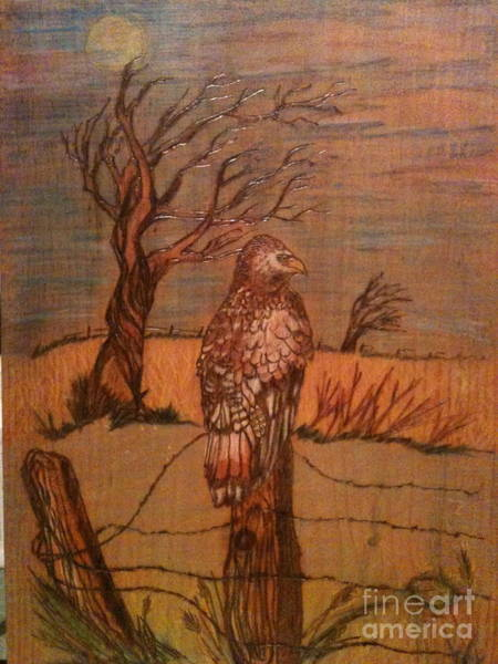 Pyrography - Eagle Storm by Denise Tomasura